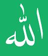 Mufti Faizul Wahid Sahab Markazul Maarif
